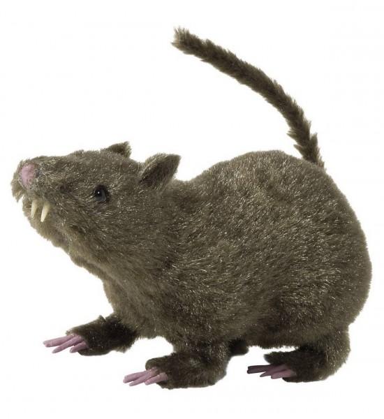 Haarige Ratte ° 21 cm