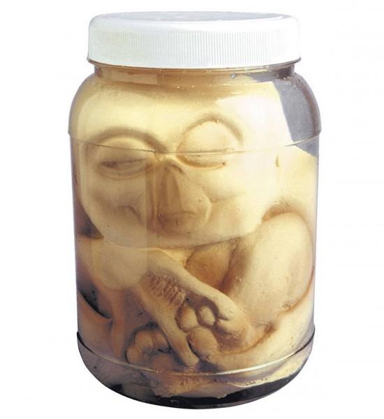 Alien Embrio im Glas